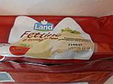 Тостовий сир Fettine Land 1кг 50шт Італія, фото 2