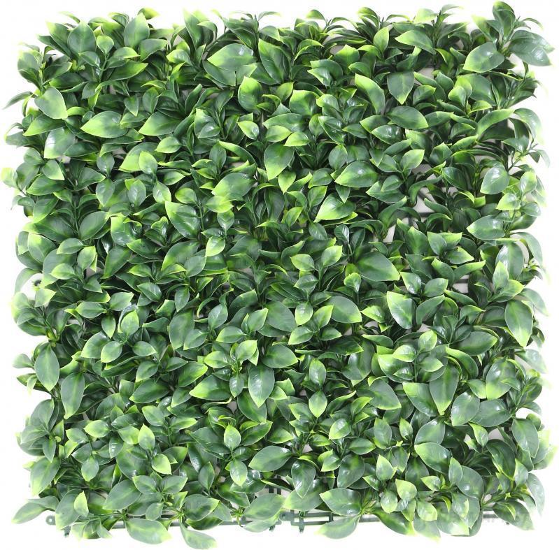 Декоративне зелене покриття Самшит молодий 50х50 см GCK-05