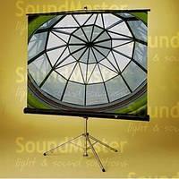 Экран проекционный Draper Diplomat размер 1x1