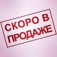 """Пресс-папье """"Лица оперы"""""""