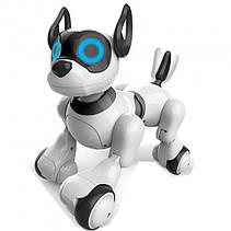 Собака-робот 20173 Интерактивная игрушка Собачка на радиоуправлении Robot Dog со Светом и Звуком, фото 2