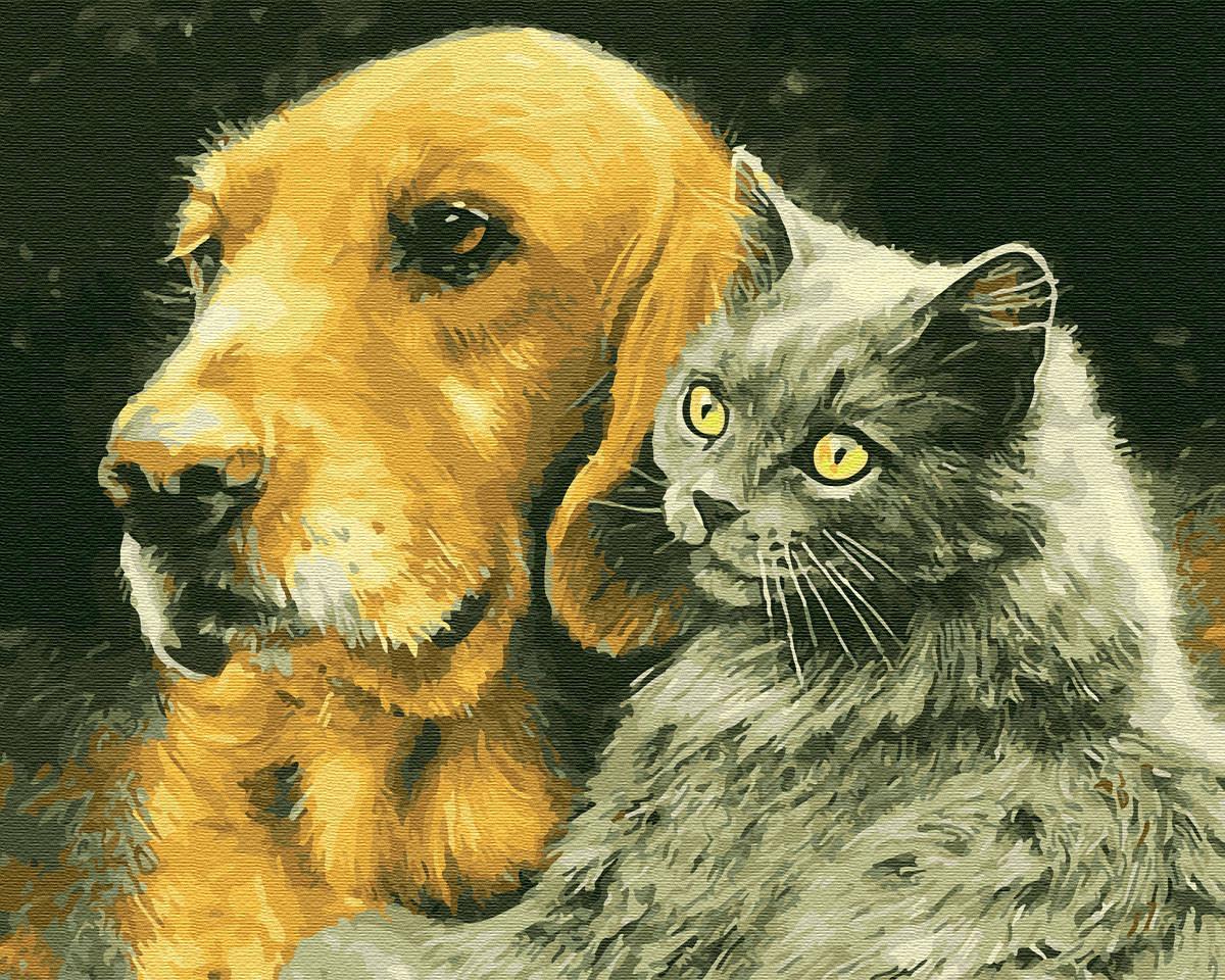 Картина по номерам Домашние любимцы 40х50 см, BrushMe (GX28848)