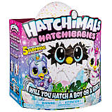 Хэтчималс Хетчибейбиз Юникет Spin Master / Hatchimals HatchiBabies Unikeets Hatching Egg, фото 7