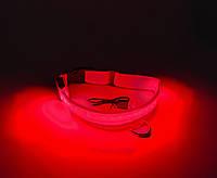 Светящийся нейлоновы ошейник для собак DogClub USB XL/52-60см Red