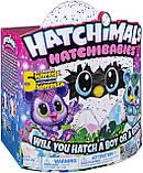 Хэтчималс Хетчибейбиз Китси Spin Master / Hatchimals HatchiBabies Kitsee Hatching Egg, фото 8