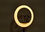 Кольцевая лампа 45 см RGB со штативом 2м для телефона, цветная лампа , кольцевой светодиодное led, фото 2