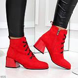 Эффектные красные замшевые женские ботинки ботильоны на удобном каблуке, фото 5