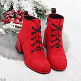 Эффектные красные замшевые женские ботинки ботильоны на удобном каблуке, фото 7