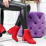 Эффектные красные замшевые женские ботинки ботильоны на удобном каблуке, фото 8