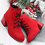 Эффектные красные замшевые женские ботинки ботильоны на удобном каблуке, фото 10
