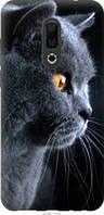 "Чехол на Meizu 16th Красивый кот ""3038u-1559-39045"""