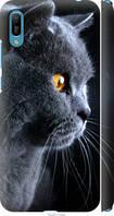 """Чехол на Huawei Y6 2019 Красивый кот """"3038c-1666-39045"""""""