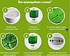 Автоматический проращиватель семян ДоброСад (с таймером), фото 2