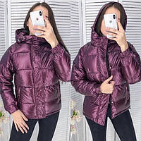 Зимняя куртка женская с капюшоном (холофайбер) 640