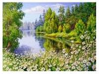 """Картина по номерам """"Летний лес"""" 40*50см,крас.-акрил,кисть-3шт.в коробке"""