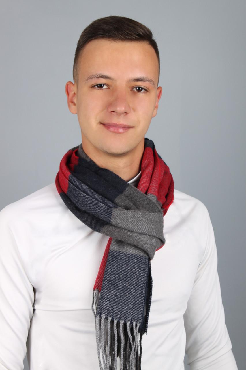 Шарф чоловічий Родерік