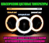 Кільце LED RGB лампа світло MJ26 см зі стійкою 1.6 м веселка, кольорова селфи підсвічування Кільцева,, фото 8