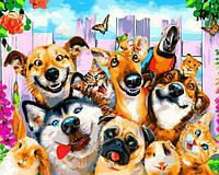 Картина по номерам Коты собачки Селфи домашних питомцев 40х50см Babylon Turbo