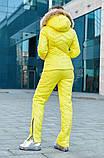 Костюм теплий жіночий зимовий, лижна куртка і штани, фото 3