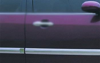 Ford Focus I 1998-2005 гг. Молдинг дверной (4 шт, нерж.)