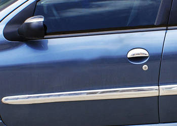 Peugeot 206 Молдинг дверной (4 шт, нерж)