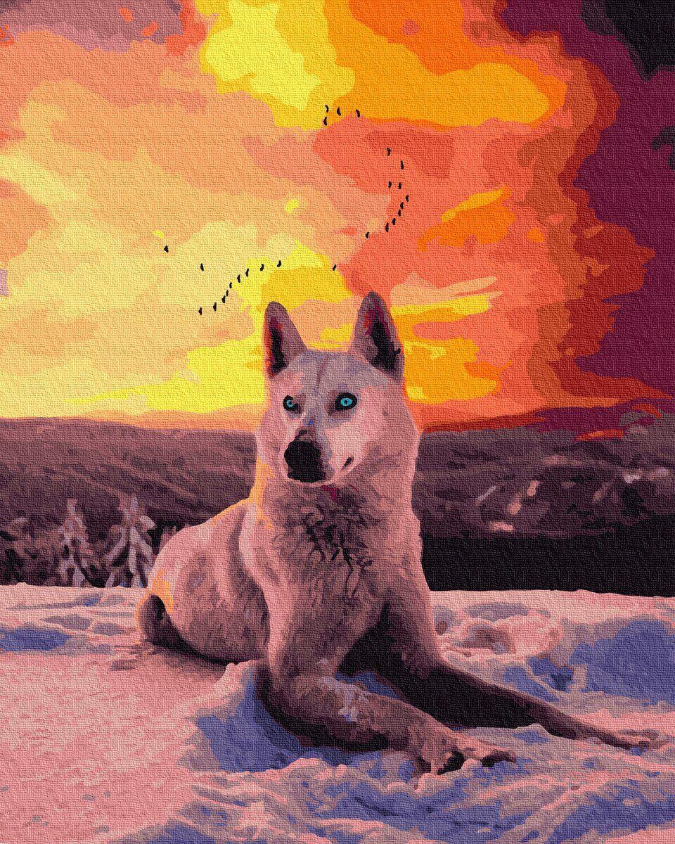 BK-GX35782 Картина для рисования по номерам Северный волк, Без коробки