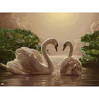 Картина по номерам - Пара лебедів (КНО301)
