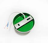 Светильник бра настенно-потолочный на 1-лампу BASE  E27 зеленый, фото 2