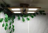 Потолочная люстра QUAD/LED LED 48W светлое дерево, фото 3