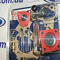 Ремкомплект карбюратора 21081, фото 1