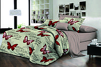 Полуторный комплект постельного белья 150х220 Ранфорс-хлопок 100% (15927)