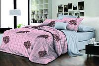 Полуторный комплект постельного белья 150х220 Ранфорс-хлопок 100% (15932)