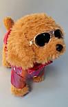 """Мягкая игрушка """"Собачка"""", интерактивная, песня на русском языке, ходит, в коробке  С 43979, фото 4"""