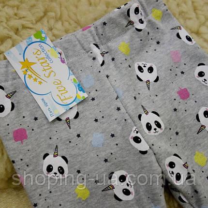 Детские леггинсы панды Five Stars HD0410-134p, фото 2