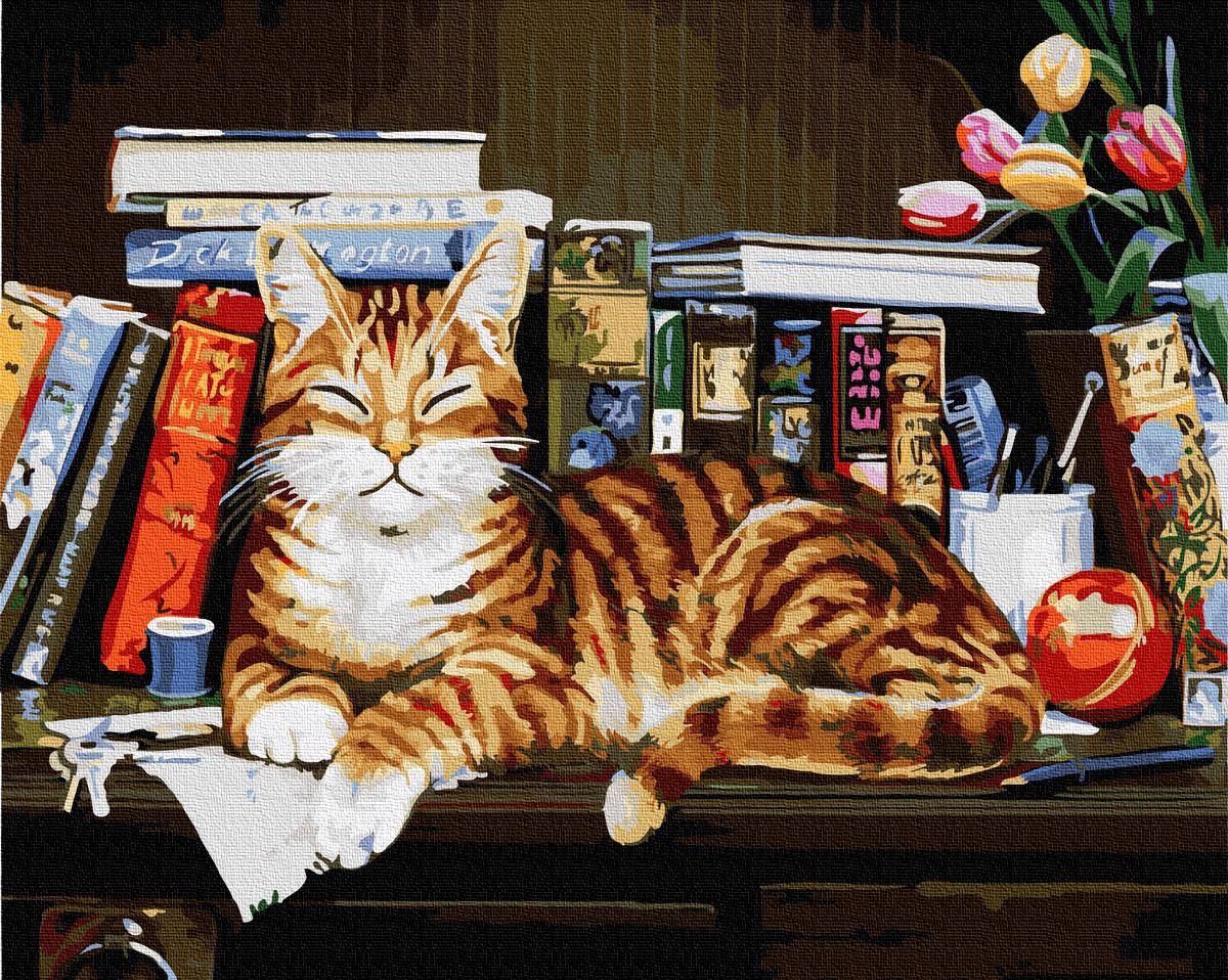 Картина по номерам Brushme Кот на книжной полке