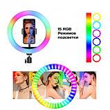 Кольцевая лампа 26 см RGB со штативом на 2м для телефона цветное селфи кольцо разноцветная кольцевая лампа, фото 2