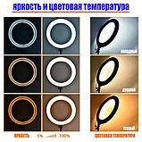 Кольцевая лампа 26 см RGB со штативом на 2м для телефона цветное селфи кольцо разноцветная кольцевая лампа, фото 6