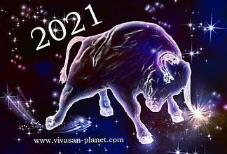 В преддверии Нового 2021 года