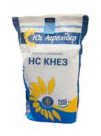 Семена подсолнечника НС КНЕЗ, фото 1