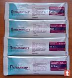 ПУЛЬМИКОРТ, AstraZeneca уп. №20 сусп. д/распылен. 0,5 мг/мл контейнер 2 мл, фото 2