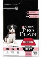 Сухой корм Purina Pro Plan Dog Medium Puppy Sensitive с лососем и рисом 12 кг