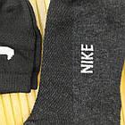 Носки детские летние сетка SPORT N, унисекс, Турция, 2 размера (26-35), ассорти, 20014346, фото 4