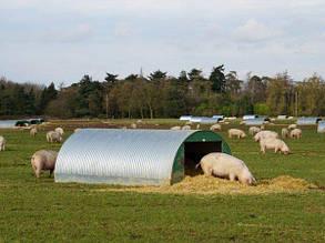 """Промышленно-бытовой фильтр """"под люк"""" из сепаратором влаги FSU для свиных ферм, фото 2"""