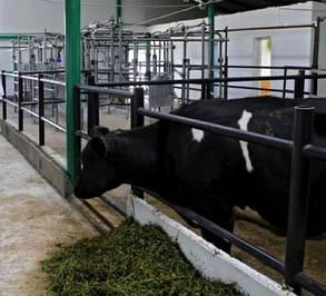 """Промышленно-бытовой фильтр """"под люк"""" из сепаратором влаги FSU для ферм КРС, фото 2"""