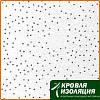 Плита для подвесного потолка Casostar Regips 600*600 мм (8мм)