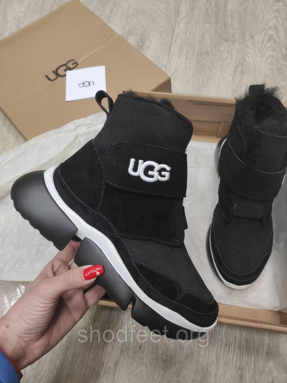 Женские ботинки сникерсы UGG Dakota на липучке