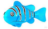 Детская игрушка Robo Fish синяя