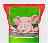 Концентрат «Гровер/финишер для свиней 15/10%» 25 кг