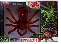Игрушка на р/у Shantou Паук Птицеед Коричневая (KI-3022-коричневый)