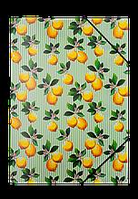 Папка на резинках А4 LEMONS, салатовая